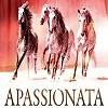 Шоу-Apassionata