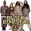 Концерт Black Eyed Peas (Блэк Айд Пиз)