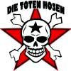 Концерт Die Toten Hosen (Ди Тотен Хозен)