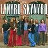 Концерт Lynyrd Skynyrd (Линирд Скинирд)