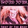 Концерт Twisted Sister